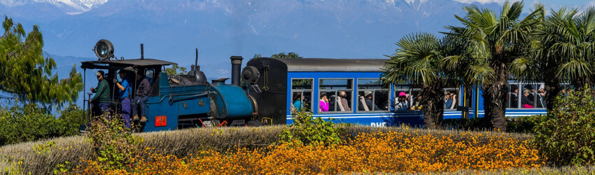 Tour packages for Darjeeling from Siliguri